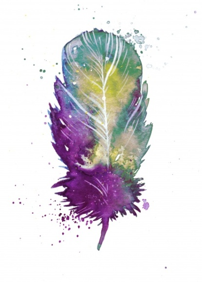 feather-15290493521Q6